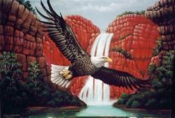 20070102095307_eagle_heart